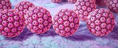 virusul papiloma cum se transmite tratamentul